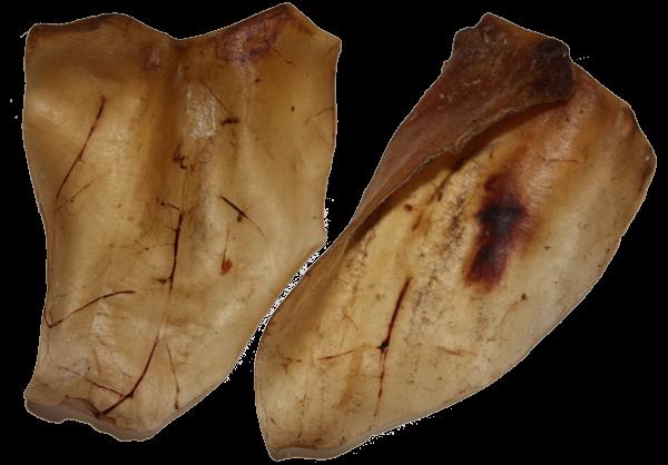 Rinderohren (10er Beutel) – Zilinski Hundesnacks