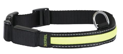 Leuchthalsband Light & Reflex